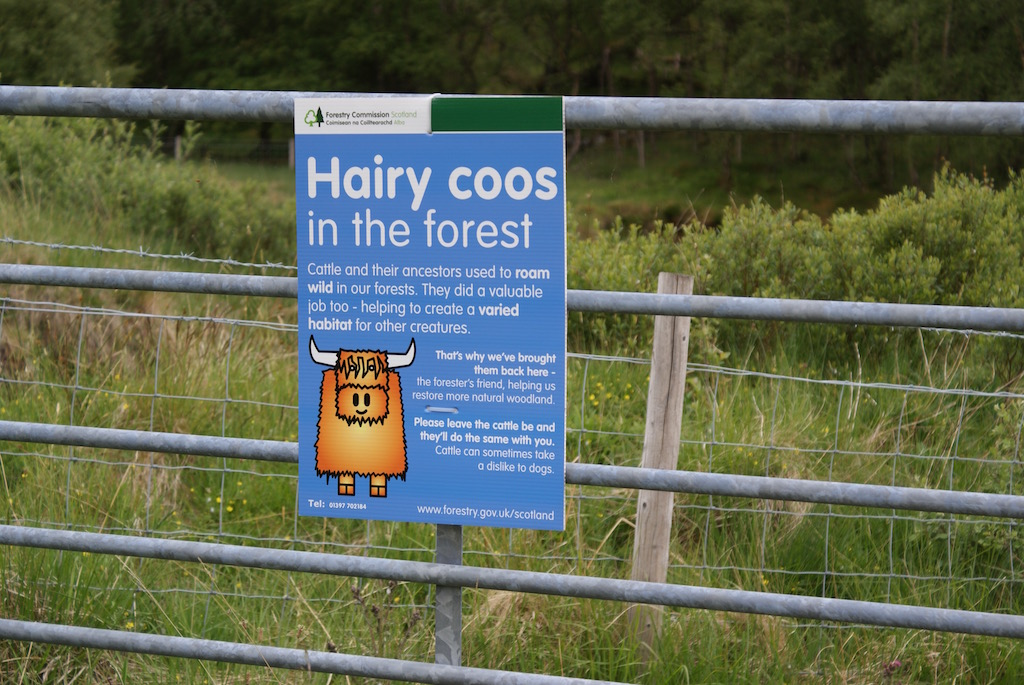 beware-of-the-coos